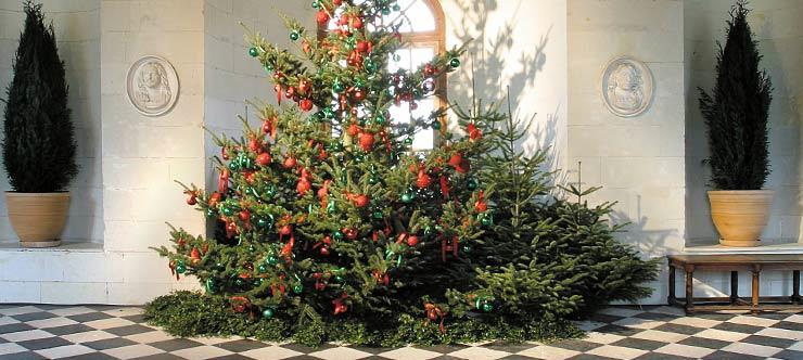 Castillos del valle del Loira en Navidad